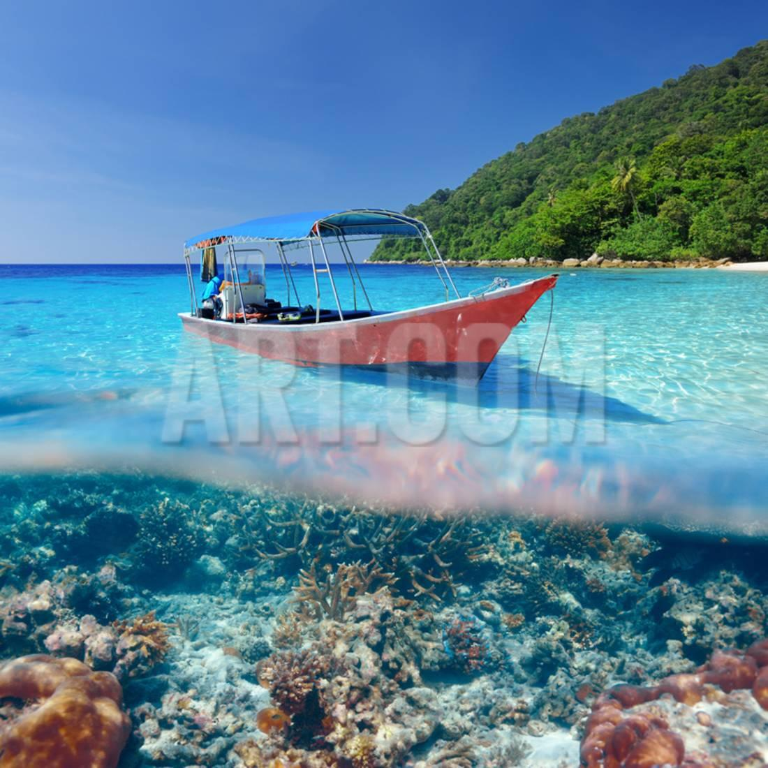Beautiful Beach and Motor Boat with Coral Reef Bottom Underwater and above Water Split View Print Wall Art By haveseen