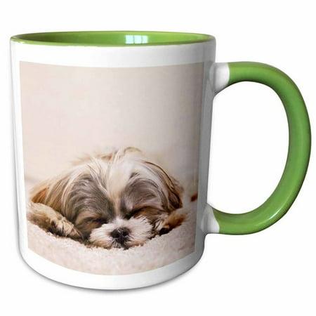 3dRose Shih Tzu Sleeping Best Friend Coffee Mug