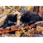 MasterPieces Black Bear 1000 Piece Puzzle