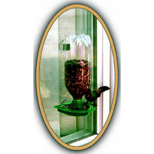 Gadjit Window Bird Feeder in Green