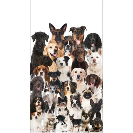 The Party Aisle Best in Show Guest 8'' Napkin (Set of