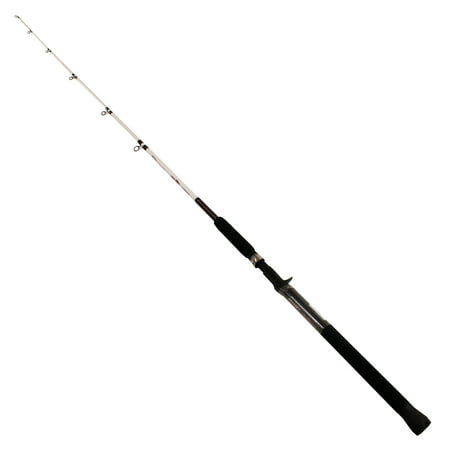 Fishing Rod Hanger (Shakespeare Ugly Stik Catfish Fishing Spinning)