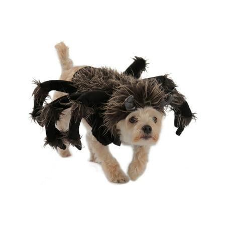 Tarantula Dog Costume for $<!---->