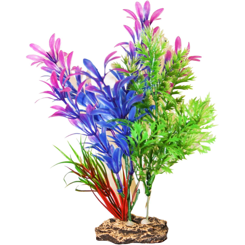 Fish for Aquarium plant decoration