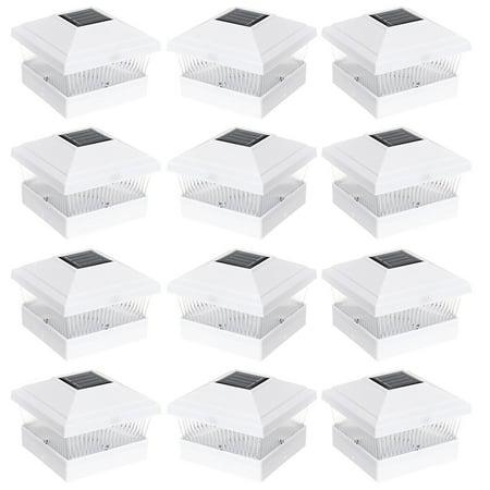 12Pack White 5