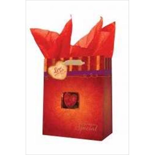 Christian Art Gifts 363220 Gift Bag For Someone Special With Tag & Tissue Medium