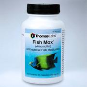 Thomas Labs Fish Mox (Amoxicillin) Antibacterial Fish Antibiotic Medication, 30 ct. (250 mg. ea.)