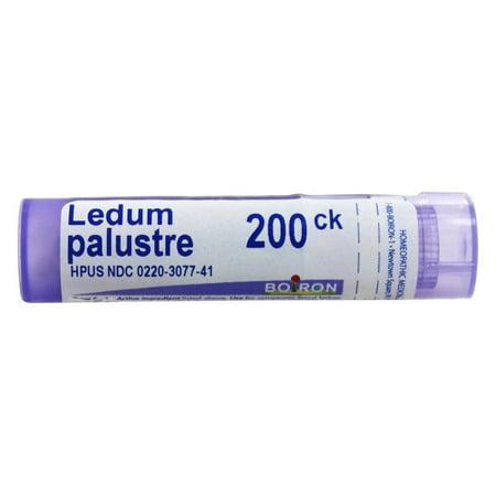 Boiron - Ledum Palustre 200 CK - 80 Pellets