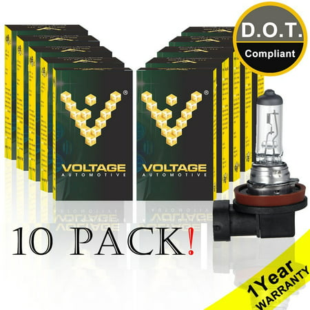 Voltage Automotive H11 Headlight Bulb - Standard Replacement For Low Beam High Beam Fog Lights (H11 Headlight Bulbs)