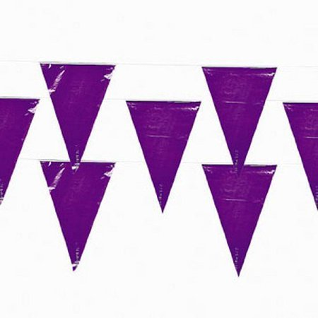 Valentine Pennant (Fun Express 100 Ft Purple Pennant Banner 48 Flags Party Event)