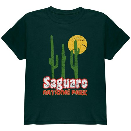 National Park Retro 70s Landscape Saguaro Youth T Shirt](70s Items)