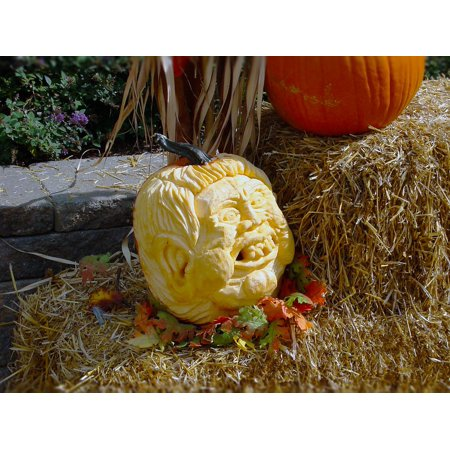 Framed Art For Your Wall Leaves Hay Carved Halloween Pumpkins Carving Face 10x13 Frame