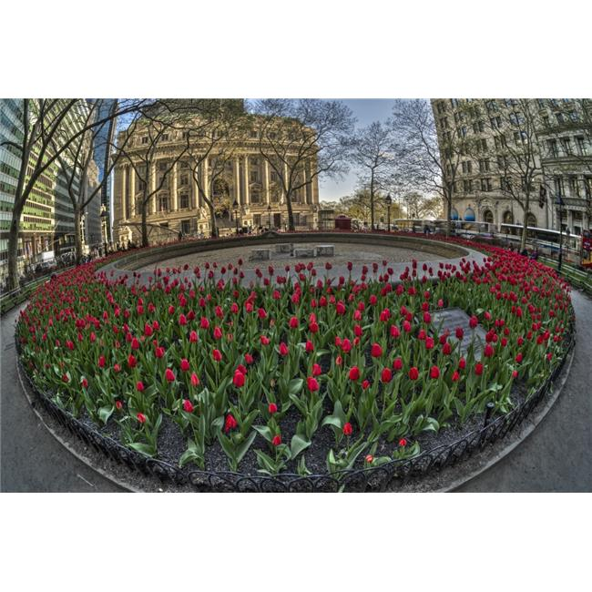 Posterazzi DPI12284584 Tulip Display in Bowling Green Park - New York City United States of America Poster Print - 19 x 12 in. - image 1 of 1