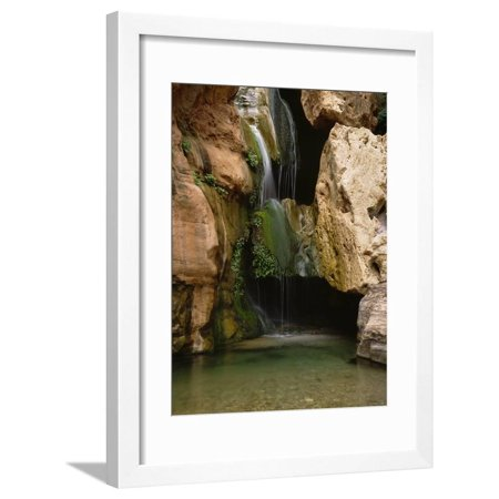 Waterfall in Elves Chasm, Colorado River, Grand Canyon NP, Arizona Framed Print Wall Art By Greg Probst Grand Canyon Arizona Framed