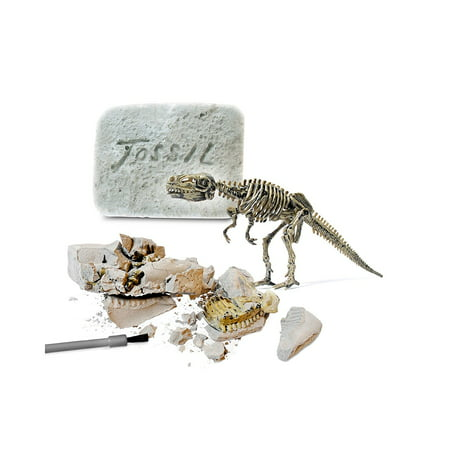 Fossil Top (Protocol Dinosaur Fossil Kit, Discover the fun of fossils with this clay excavation kit,Walmartplete with a tiny toy T-Rex, which can be assembled once.., By Asstd National Brand )