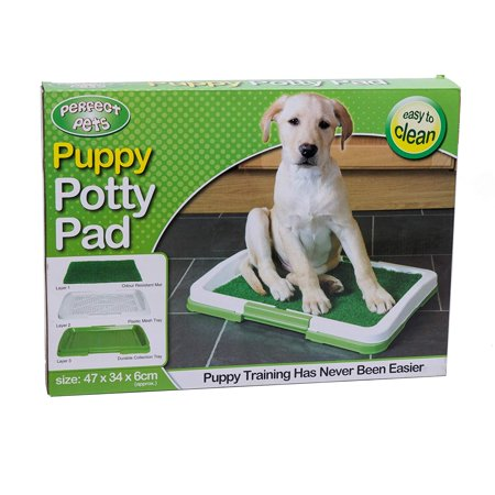 3 Layers Puppy Pee Potty Trainer for Pet Toilet Puppy Potty Pad Outdoor Indoor Restroom for Pet Cat Dog Puppy Training-Non Toxic-Synthetic Grass-Easy Clean (medium) By (Cleaning Cat Pee Out Of A Mattress)