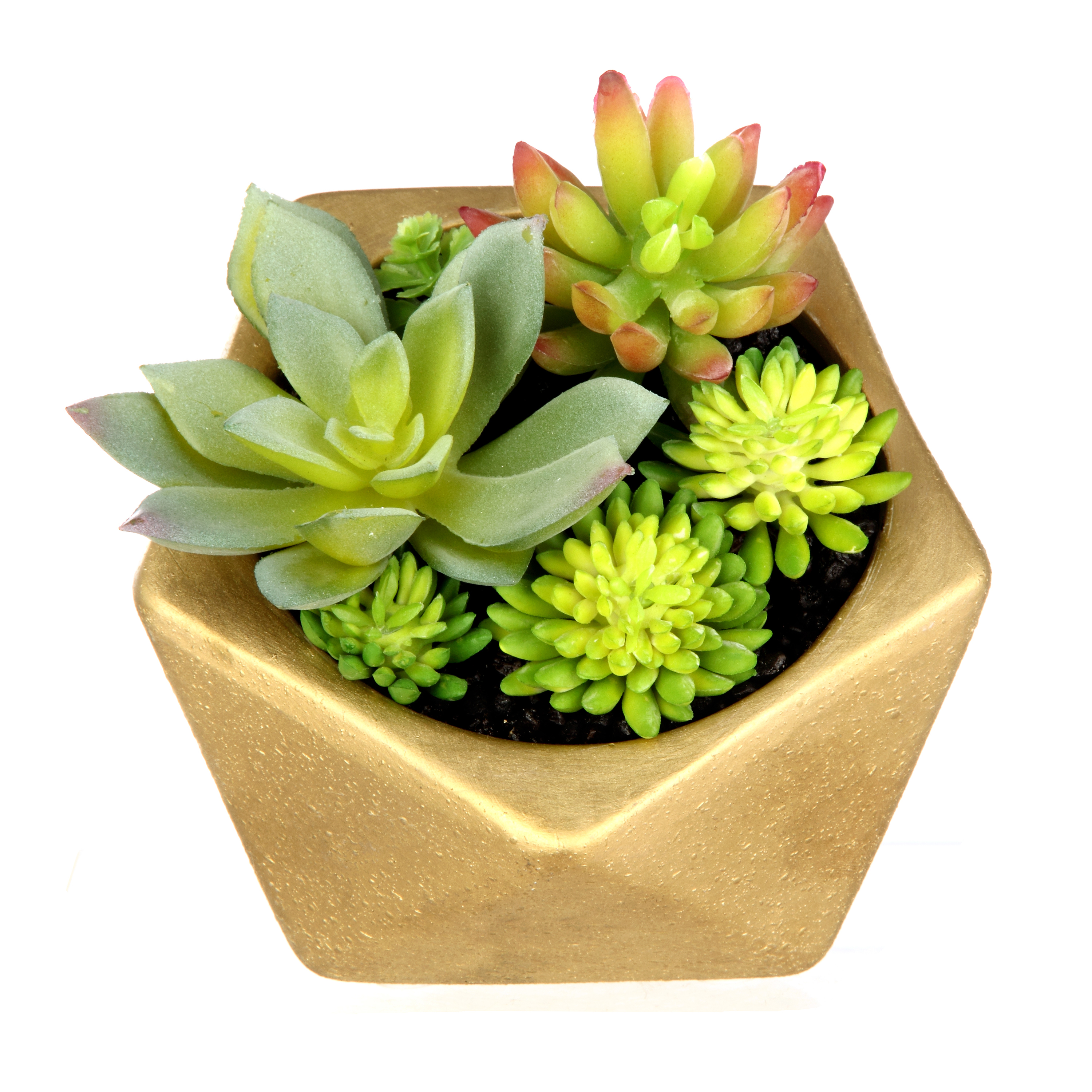 Mainstays Tabletop Gold Succulent