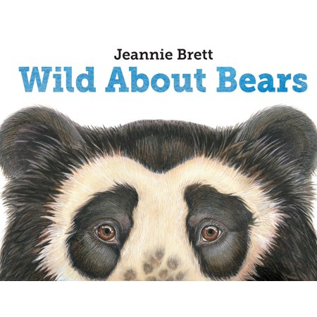About Bears - Wild About Bears