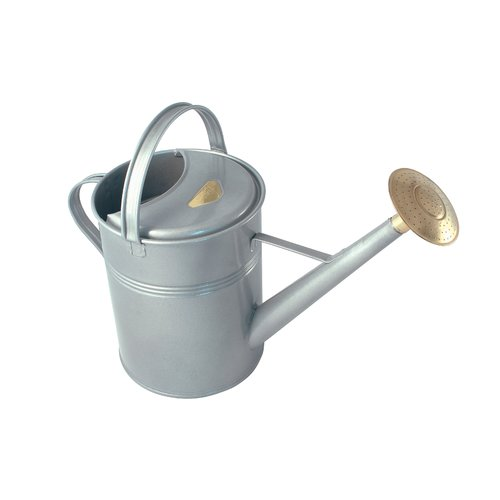 Haws Watering Cans Haws Traditional Galvanized Metal Outdoor Watering Can With Rubber Rose 8 0 Ltr 2 3 Us Gallons Walmart Com Walmart Com