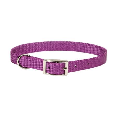 Coastal Pet Products  Inc  401 14 Ord 5 8 Nyl Web Collar