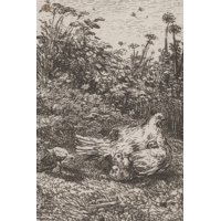 Poetose Notebooks: Le Poule et ses Poussins / The Hen and Her Chicks: A Poetose Notebook / Journal / Diary (50 pages/25 sheets) (Paperback)