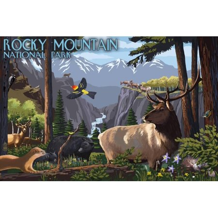 Rocky Mountain National Park - Wildlife Utopia Print Wall Art By Lantern Press
