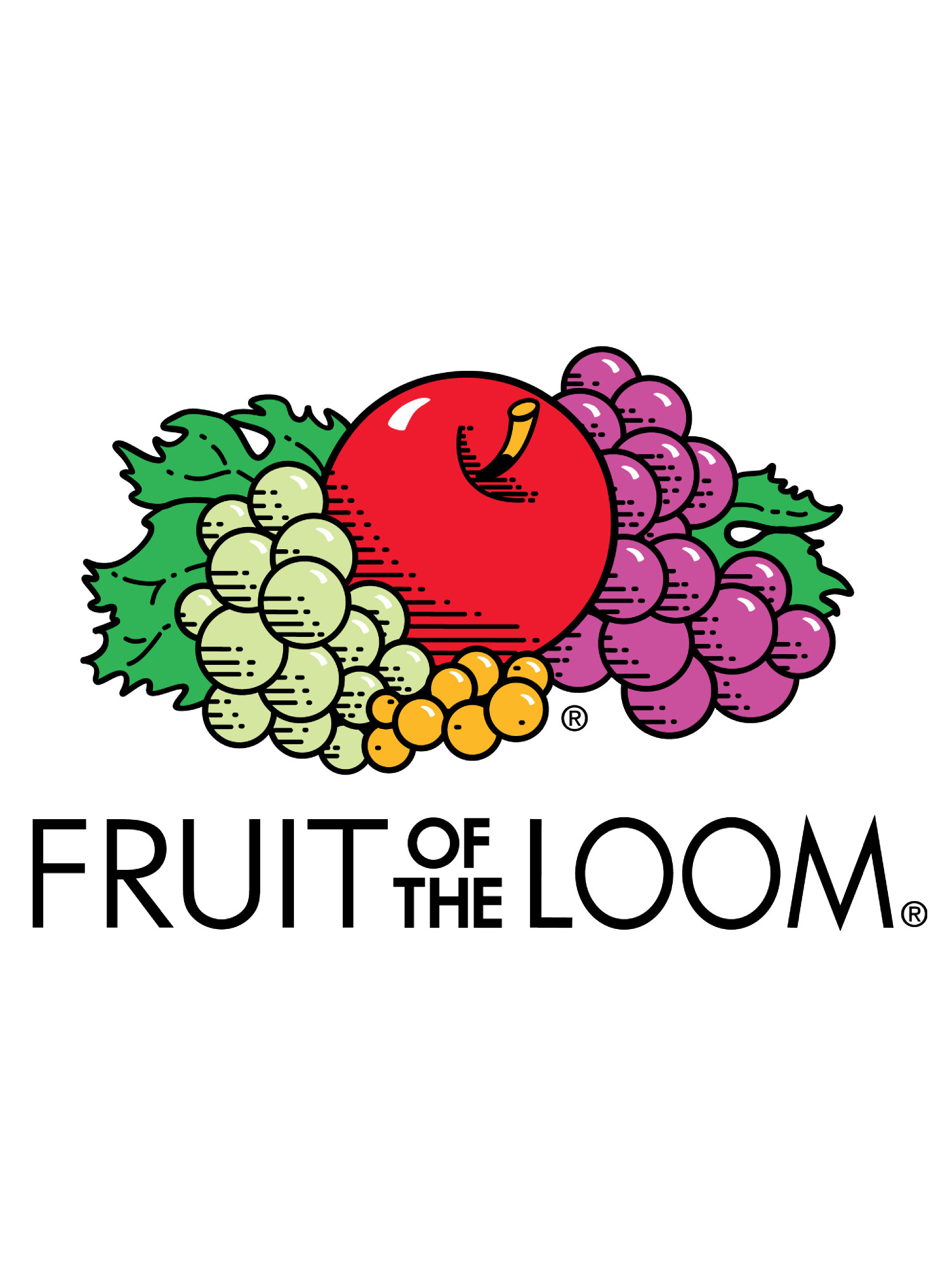 51a7afd94 Fruit of the Loom - Fruit of the Loom Men s Dual Defense EverSoft Pullover  Hooded Sweatshirt - Walmart.com