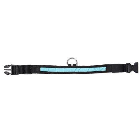 medium LED Light Up Dog Collar Nylon Pet Night Safety Bright Flashing Adjustable NEW - image 2 de 5
