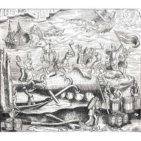 Whale Fishing. After Woodcut in Cosmographie Universelle of Thevet Published 1574 Poster Print, Large - 30 x 26 - image 1 of 1