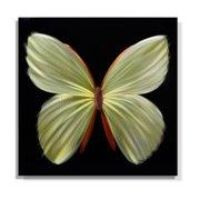 Metal Artscape Nova Butterfly Graphic Art Plaque
