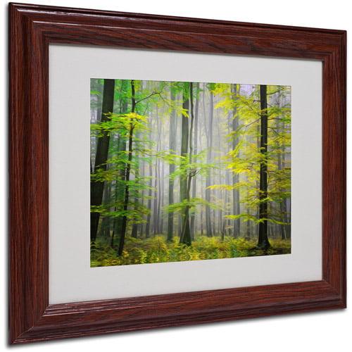 "Trademark Fine Art ""Sugar Low"" Canvas Art by Philippe Sainte-Laudy, Wood Frame"