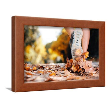 (Close up of Feet of a Runner Running in Autumn Leaves Training for Marathon and Fitness Healthy Lif Framed Print Wall Art By warrengoldswain)
