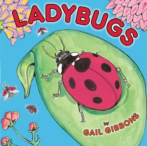 Ladybugs - eBook