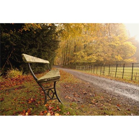 Posterazzi DPI1868787 Northumberland England - A Bench Along A Road In Autumn Poster Print, 19 x 12 - image 1 of 1