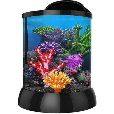 Aqua Terra 2 Gallon with 3D Coral Background, Black (Propane Tank 2 Gallon)