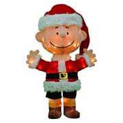 Product Works 24-Inch Pre-Lit 3D Peanuts Santa Charlie Brown Christmas Yard Decoration, 50 Lights