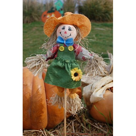 Canvas Print October Halloween Scarecrow Pumpkins Harvest Cute Stretched Canvas 10 x 14](October Halloween Cute)