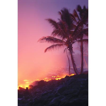 Hawaii Big Island Lava Flowing Into Ocean Palm Trees Alongside Pink Purple Smoke Sky C1627 Canvas Art - Mary Van de Ven  Design Pics (24 x 38)