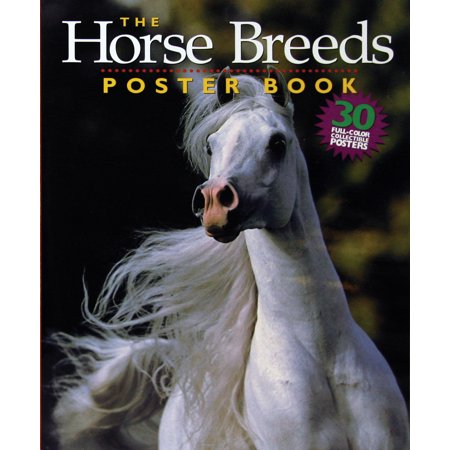Horse Breeds Poster Book - Paperback - White Horse Meaning In Halloween 2
