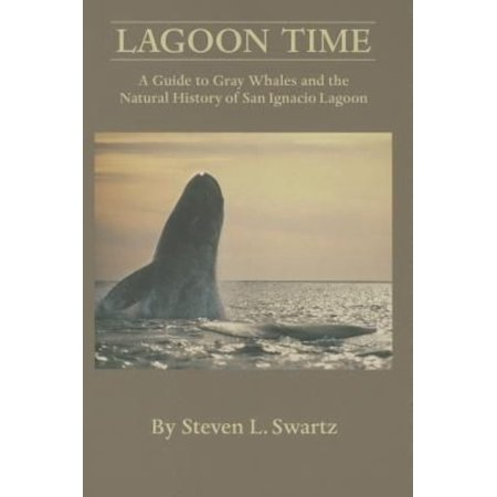 Lagoon Time  A Guide To Grey Whales And The Natural History Of San Ignacio Lagoon