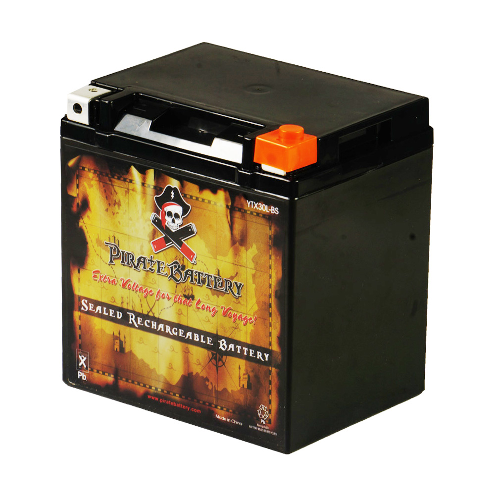 YTX30L-BS High Performance - Maintenance Free - Sealed AGM Motorcycle Battery