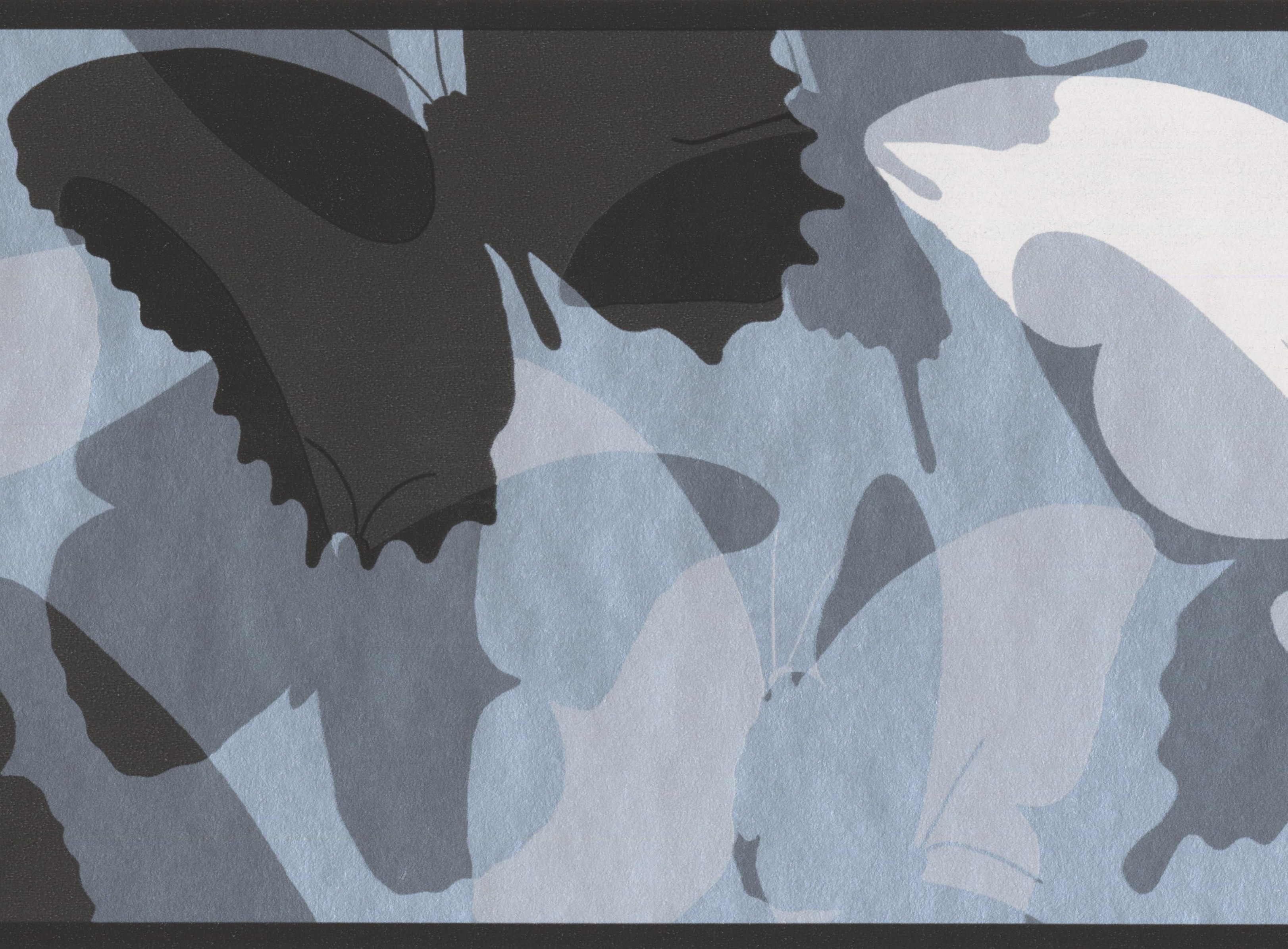 . Black Grey White Abstract Butterflies Wallpaper Border for Kids  Roll 15  x  6