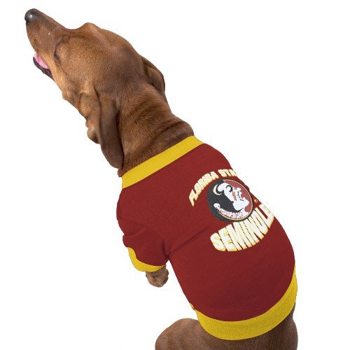 Florida State University T-Shirt - Medium, Screen printed on front By Pets First
