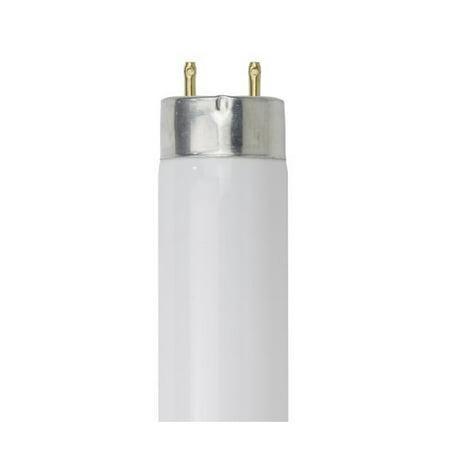 Luxrite 24 inch 17W T8 4100K Cool White G13 2-Pin Fluorescent Tube Bulb 17w T8 Fluorescent Bulb