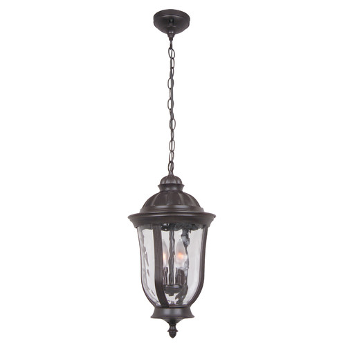 Charlton Home Oakhill 2-Light Outdoor Hanging Lantern by