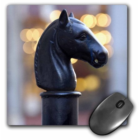 3dRose Hitching Post, New Orleans, Louisiana - US19 FVI0011 - Franklin Viola, Mouse Pad, 8 by 8 inches