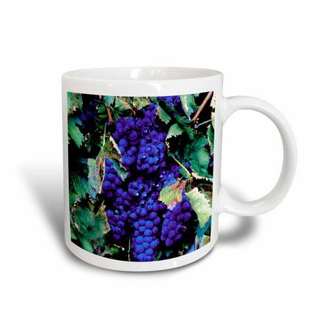 Grape Ceramic - 3dRose Grapes, Ceramic Mug, 11-ounce
