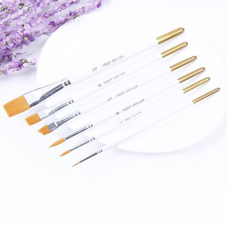Professional 6pcs Paint Brushes for Artist Acrylic Oil Watercolors Paintings