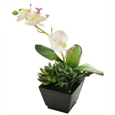 Northlight Seasonal Artificial Orchids Desktop Floral Arrangement in Pot ()