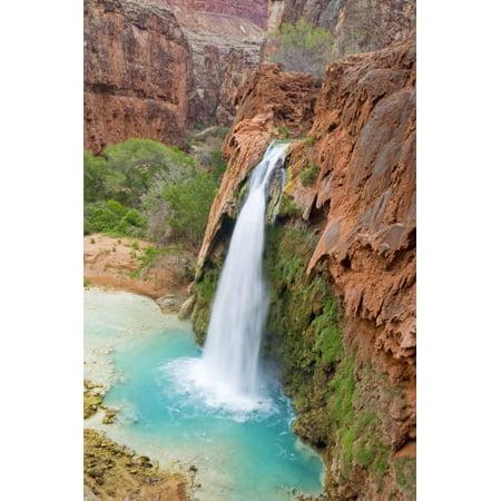 Havasu Waterfall on the Havasupai Reservation in Arizona, USA Print Wall Art By Chuck Haney